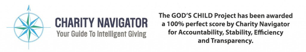 Charity Navigator Perfect Rating